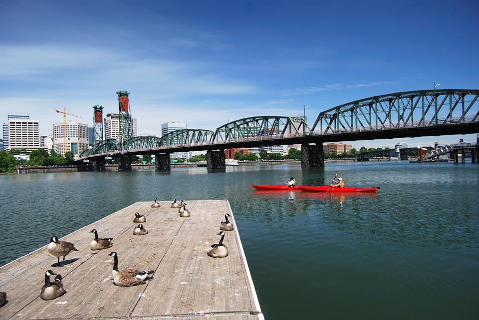 Kayaking Through downtown